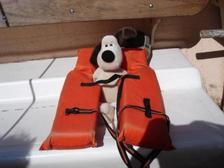 Sailinggromit
